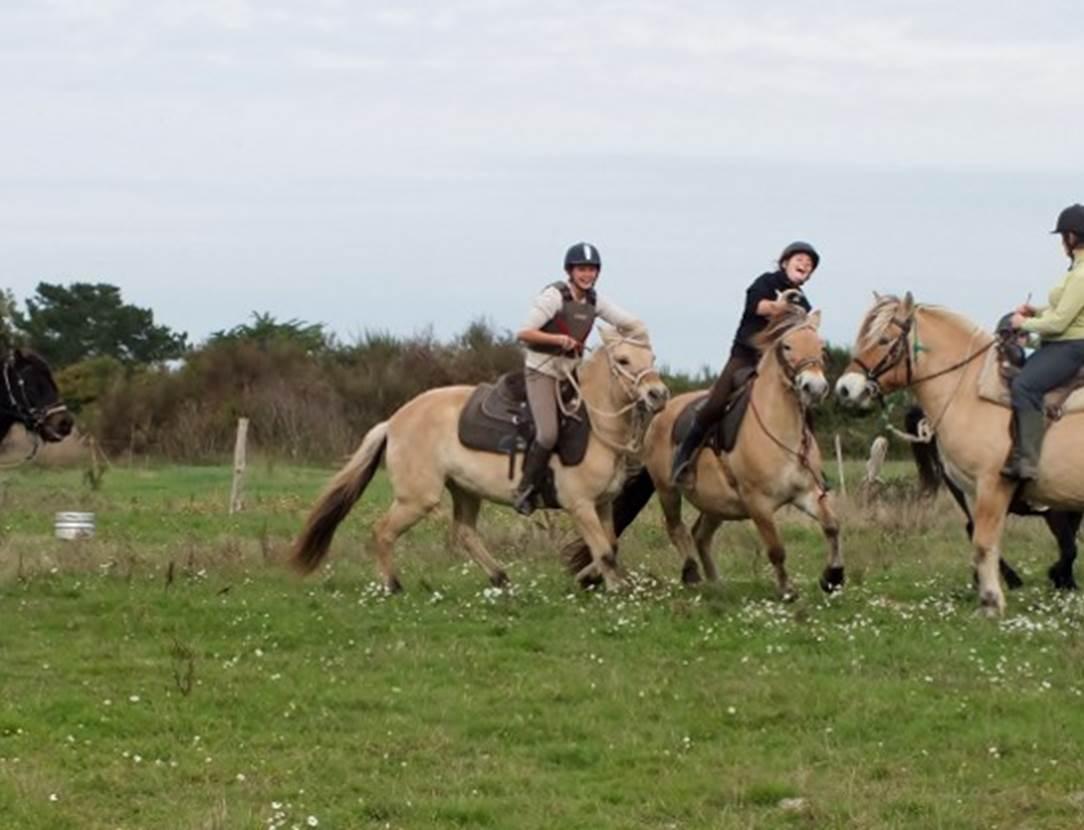 Centre-Equestre-Sentiers-du-Riellec-Sarzeau-Presqu'île-de-Rhuys-Golfe-du-Morbihan-Bretagne sud