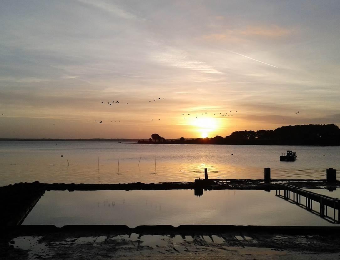 Aux-Filles-des-Marées-Sarzeau-Presqu'île-de-Rhuys-Golfe-du-Morbihan-Bretagne sud