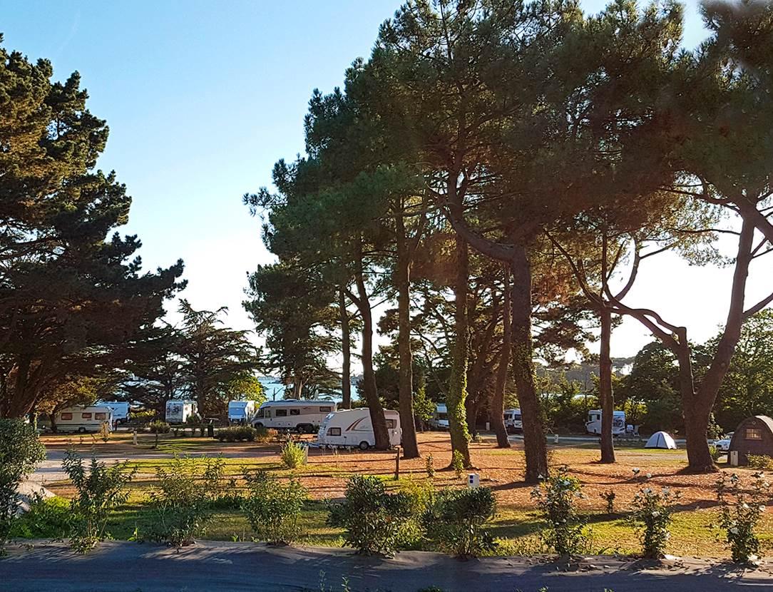 Vue mer au camping Ker Eden Golfe du Morbihan