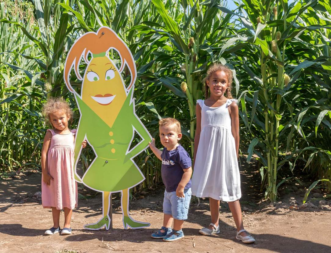 Pop Corn Labyrinthe-Ploemel-Morbihan-Bretagne-sud-03