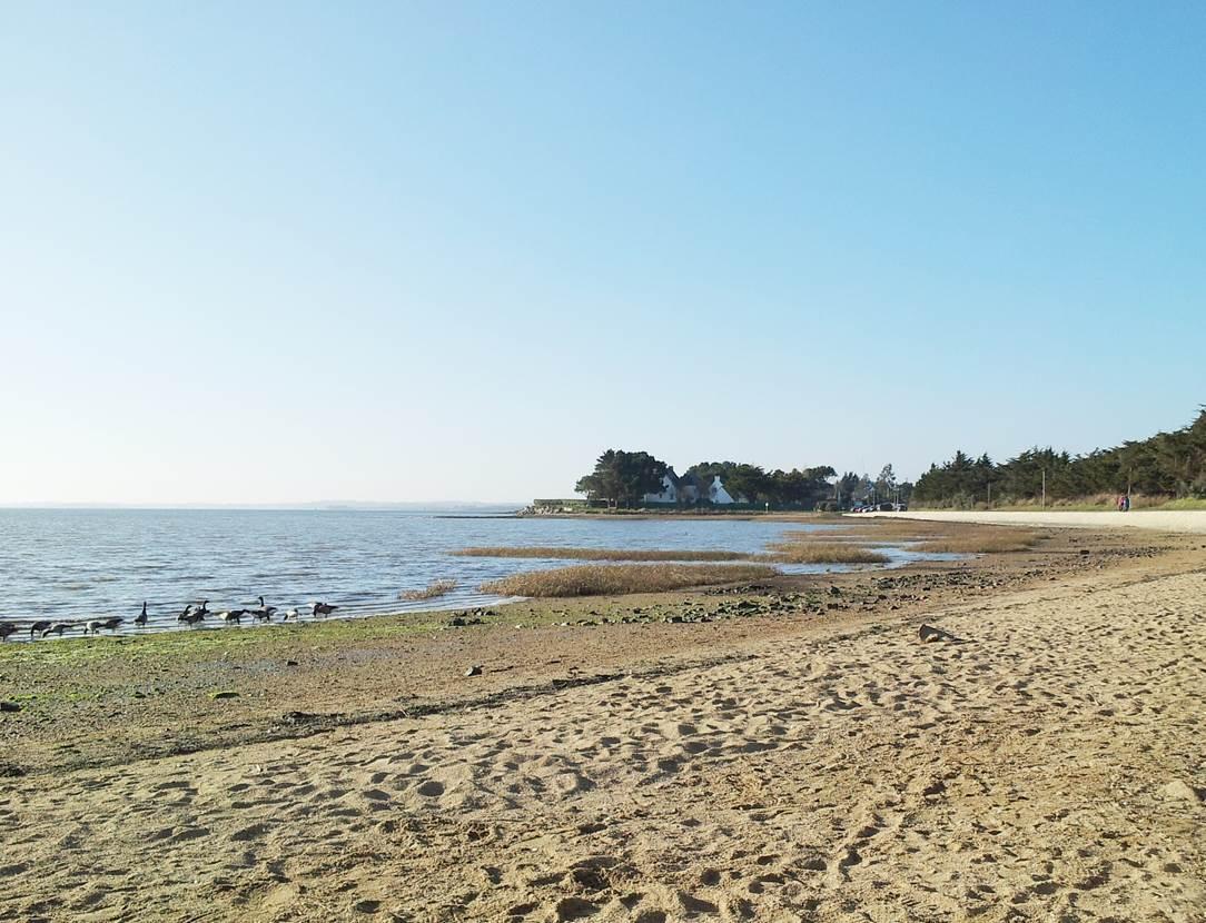 Plage de Saint-Armel - Morbihan - Bretagne Sud