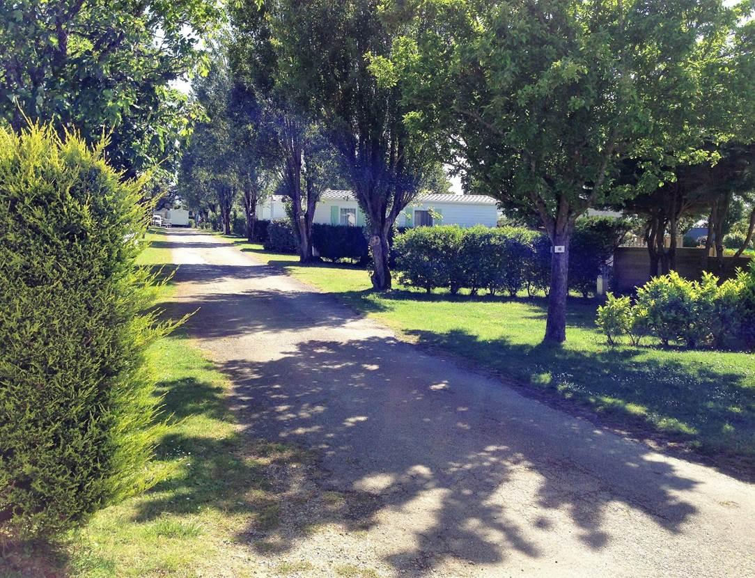 Camping-Le-Goh-Velin-Saint-Gildas-de-Rhuys-Presqu'île-de-Rhuys-Golfe-du-Morbihan-Bretagne sud