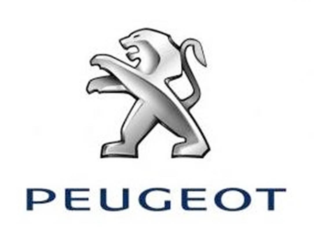Garage-Renet-Agent-Peugeot-Sarzeau-Presqu'île-de-Rhuys-Golfe-du-Morbihan-Bretagne sud