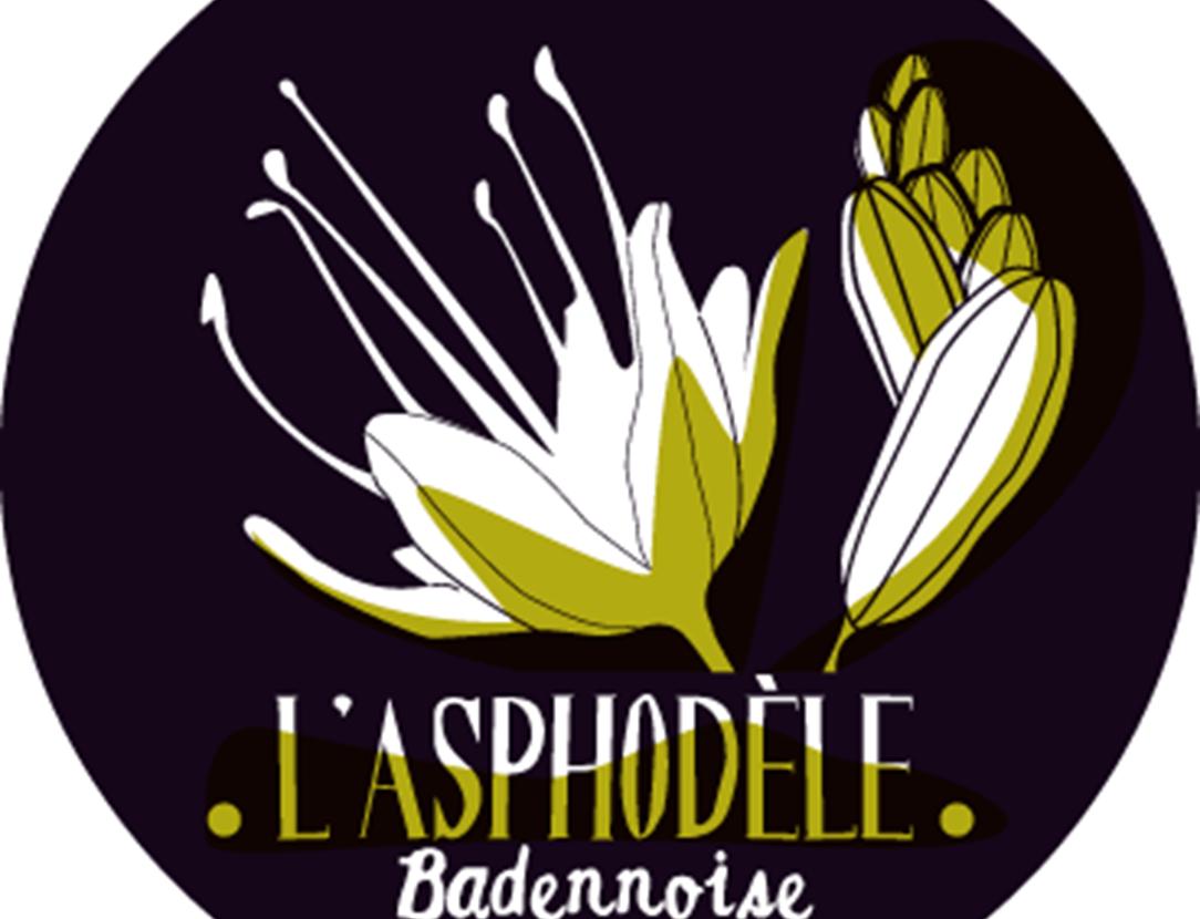 Fête de l'Asphodèle - baden - golfe du morbihan - bretagne sud