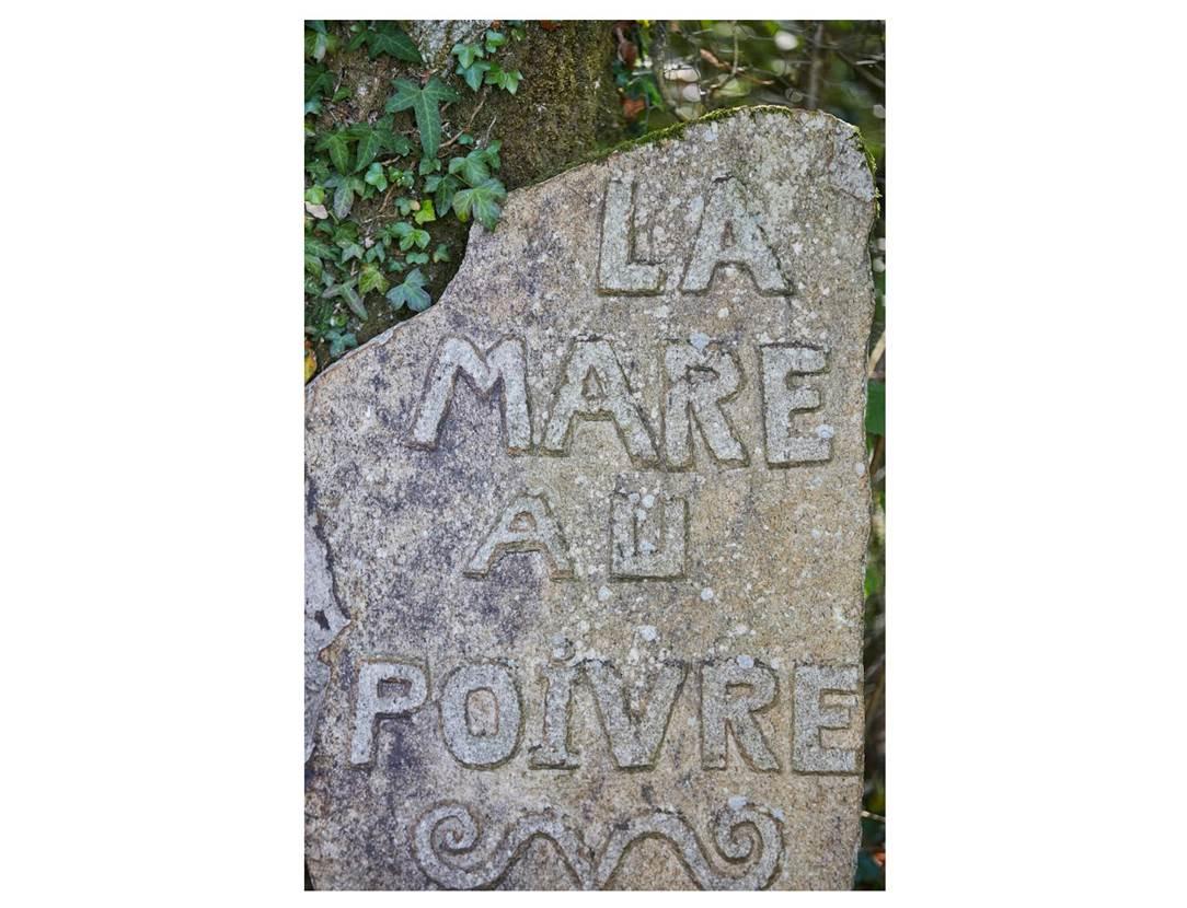 Parc-de-la-Mare-au-Poivre-Locqueltas-Golfe-du-Morbihan-Bretagne sud