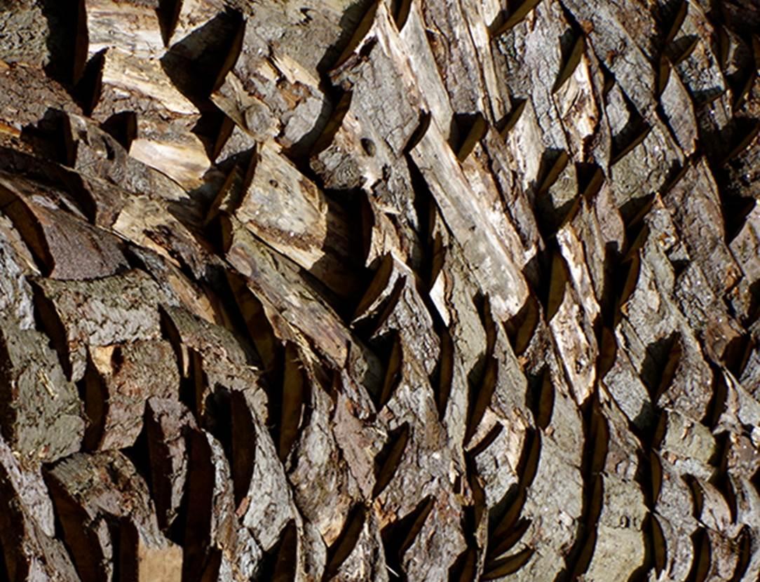 exposition-intrant-simon augade-musee de la cohue-vannes-golfe du morbihan-bretagne sud