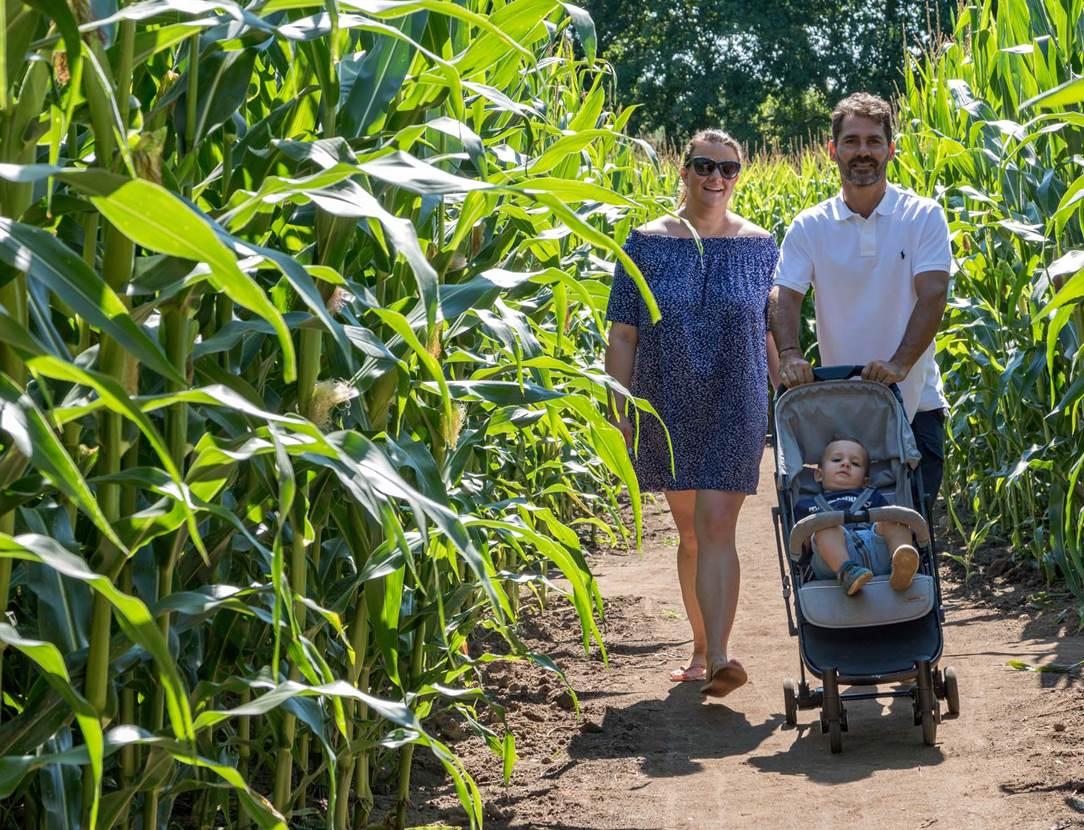 Pop Corn Labyrinthe-Ploemel-Morbihan-Bretagne-sud-05