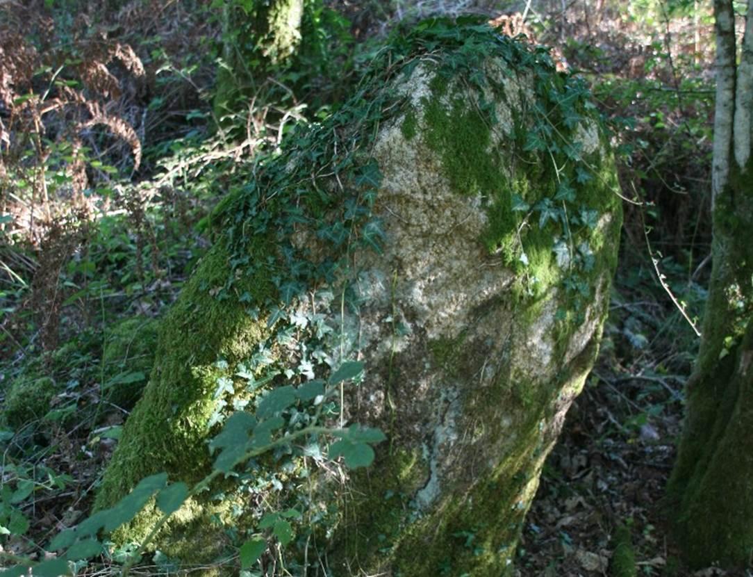 menhir loge au loup Trédion Morbihan Bretagne-sud