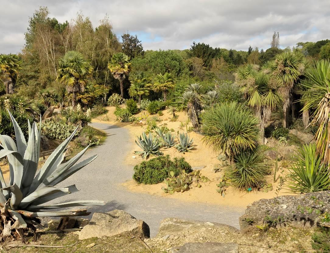 jardin mexi3