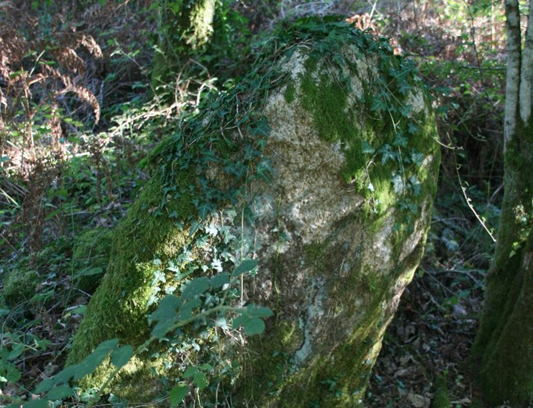 dolmen de Coeby Trédion Morbihan Bretagne-sud