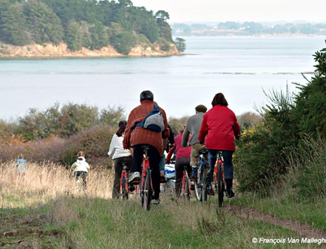 Ile-aux-moines-à-vélo-gwen-arzon-morbihan-bretgane sud