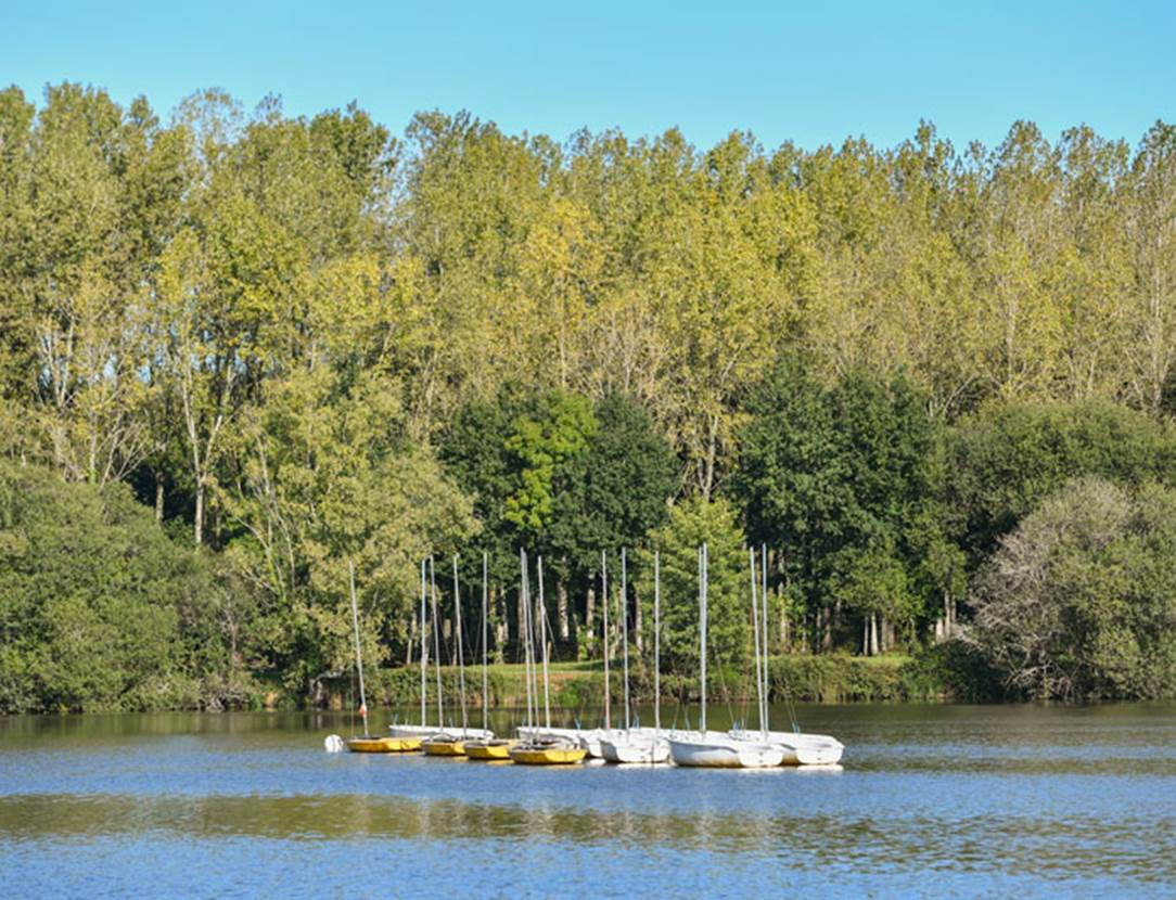 Etang-de-la-Forêt-Brandivy-Golfe-du-Morbihan-Bretagne sud