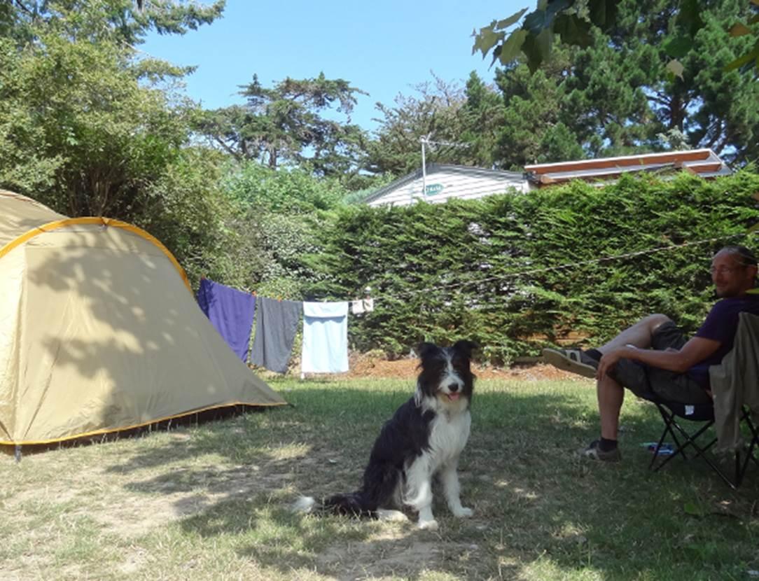 Emplacement-Tente-Camping-Le-Bilouris-Arzon-Presqu'île-de-Rhuys-Golfe-du-Morbihan-Bretagne sud