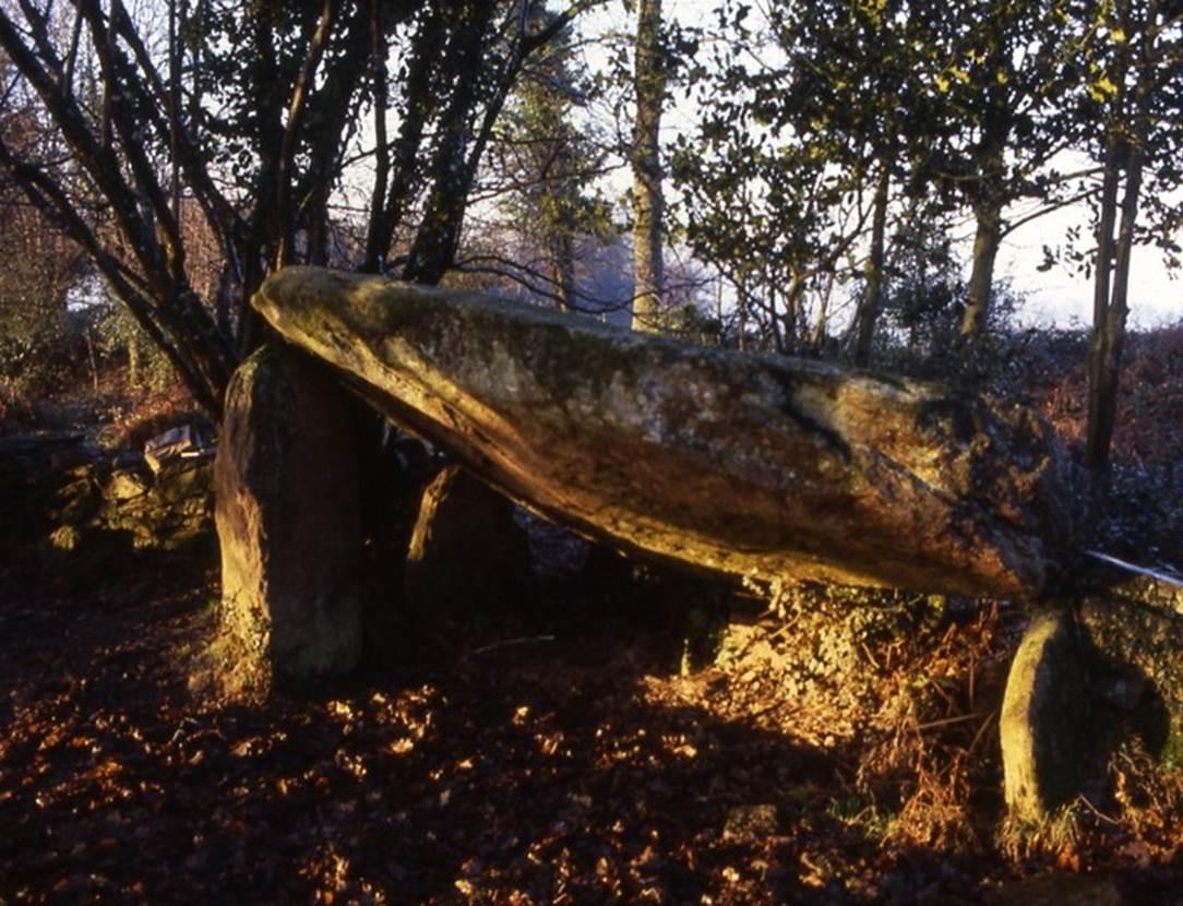 dolmen de la gree morbihan bretagne-sud