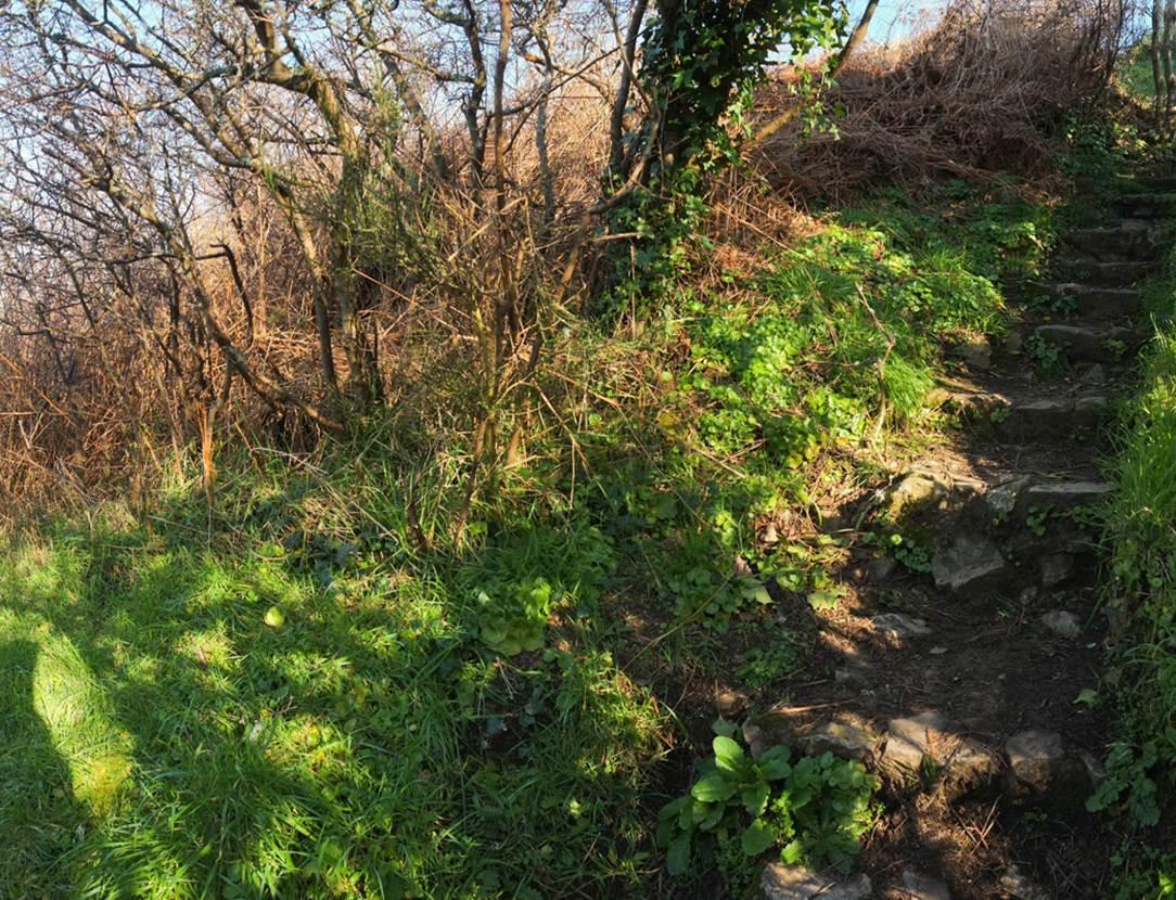 Tumulus de Tumiac ou Butte de César Arzon (2) - Morbihan Bretagne Sud