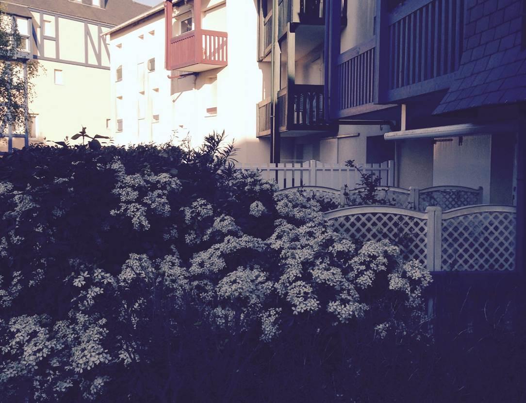Résidence-appartement-Grégoire-Georges-arzon-morbihan-bretagne sud