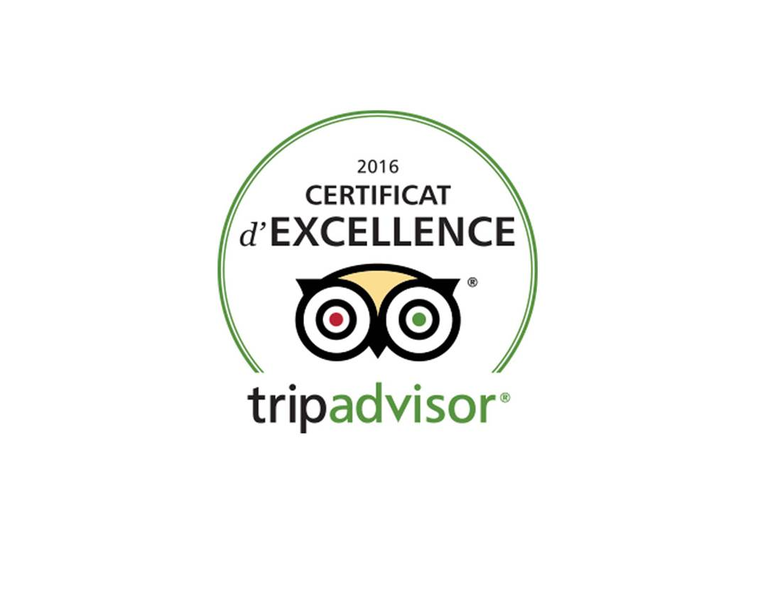 Logo-Tripadvisor-Golfe-du-Morbihan-Bretagne sud
