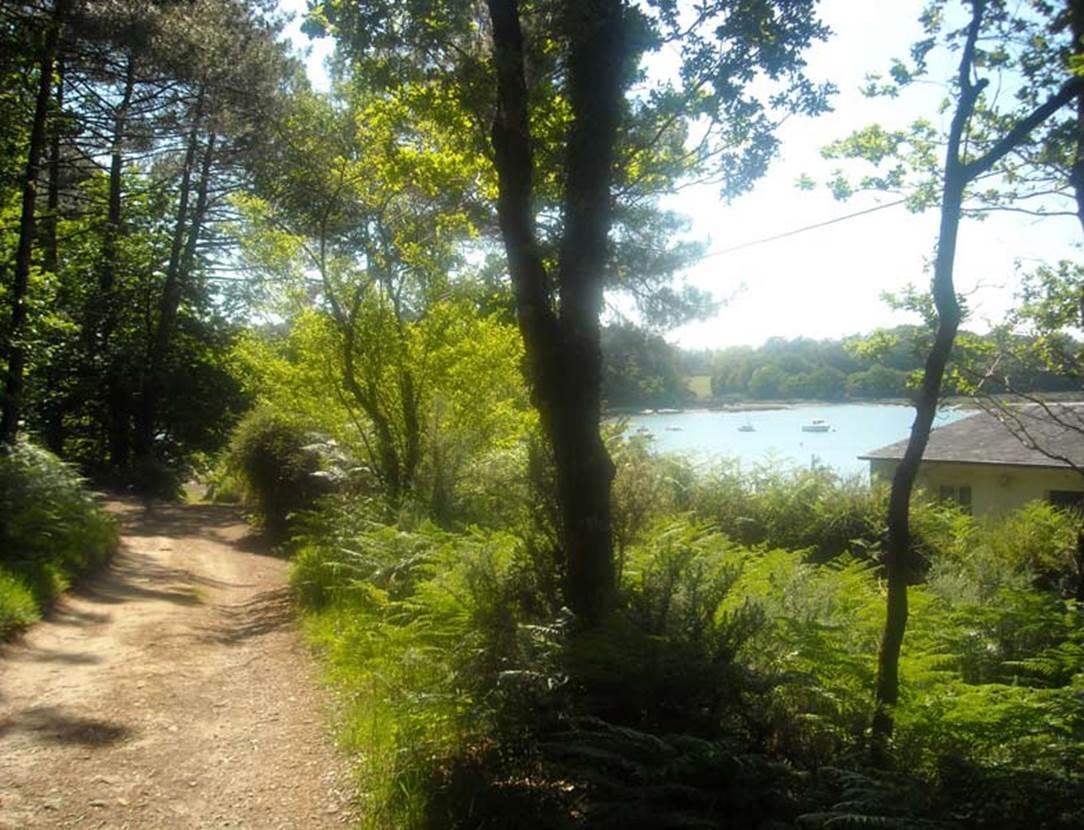 Camping-Parc-Lann-Le Bono-Golfe-du-Morbihan-Bretagne Sud