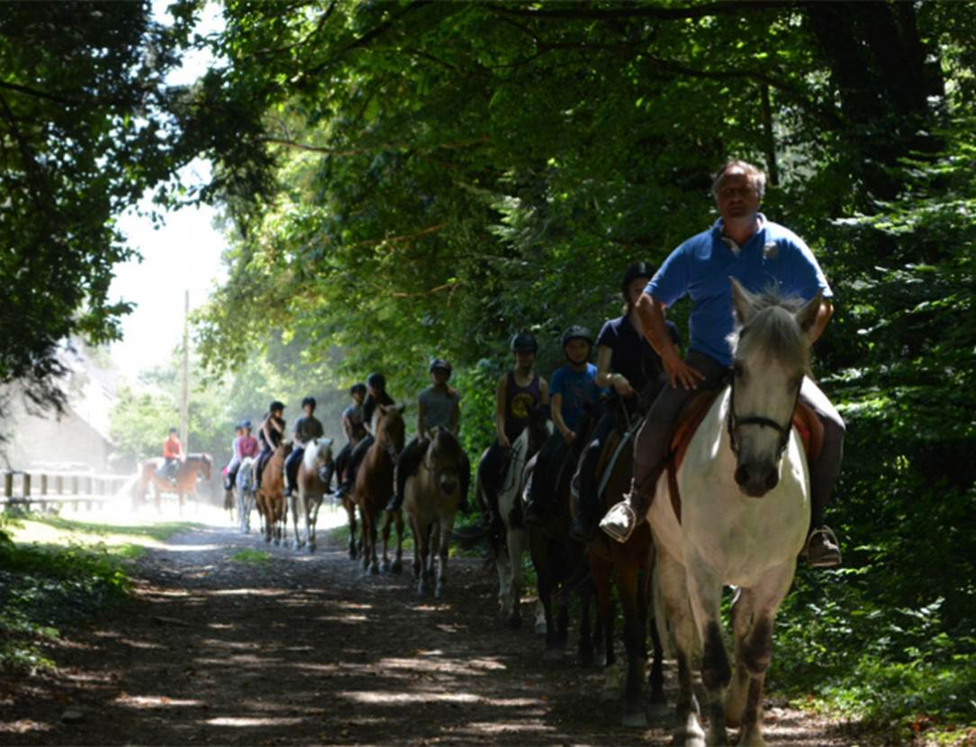 stage d'équitation-ecurie de la chenaie-saint avé-golfe du morbihan-bretagne sud