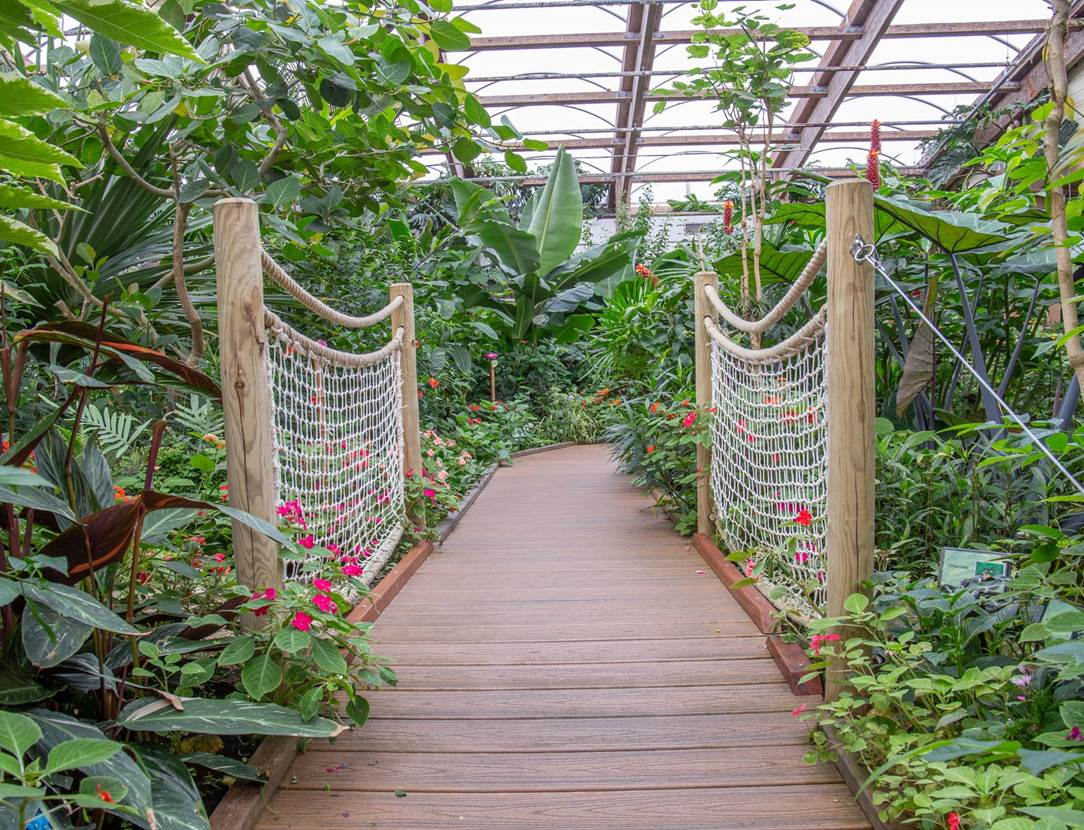 jardin-aux-papillons-morbihan-bretagne-sud-31