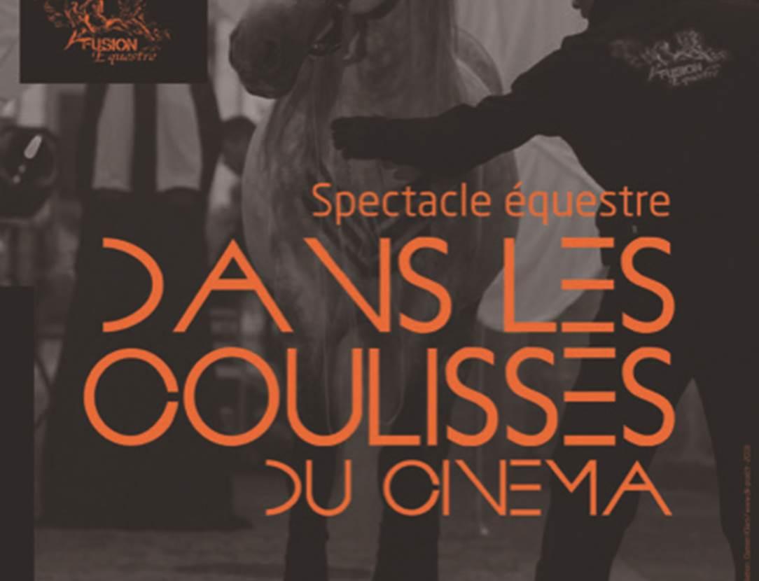 Spectacle-équestre(des-coulisses-du-cinéma-Monterblanc-Golfe-du-Morbihan-Bretagne Sud