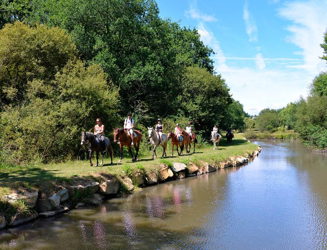 Balades à poney ou à cheval au Centre équestre sur place