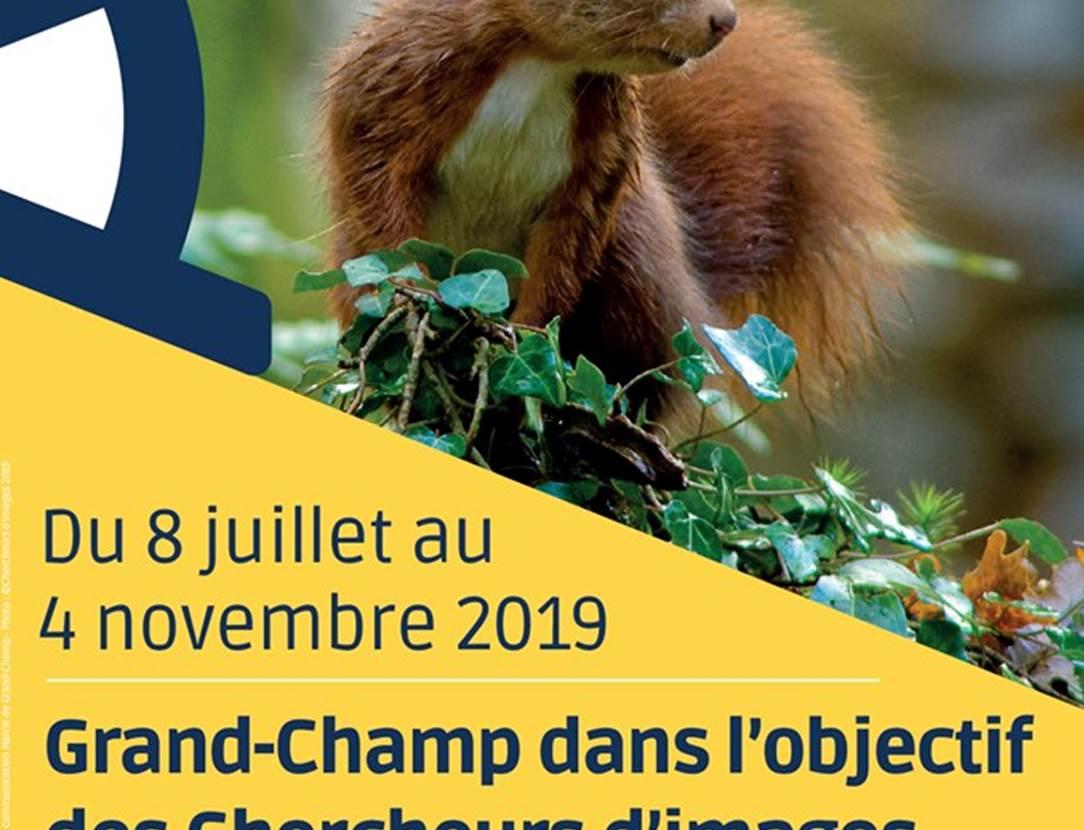 Expo-photos-Grand-Champ-Golfe-du-Morbihan-Bretagne Sud