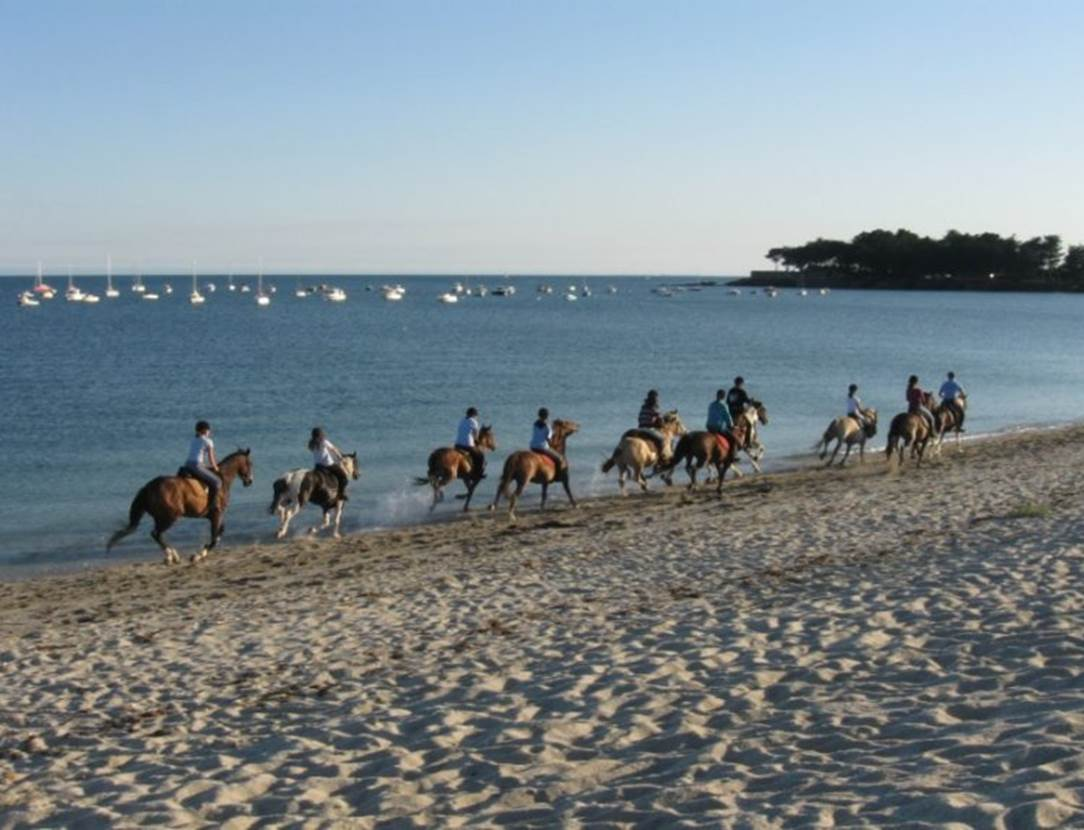 Centre-Equestre-de-Kerblanquet-Sarzeau-Presqu'île-de-Rhuys-Golfe-du-Morbihan-Bretagne sud