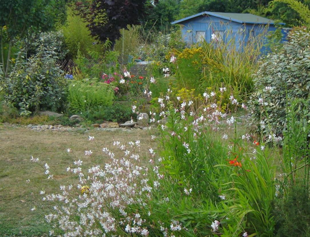 Jardin-Chambre-d-hôte-Couleur-Océan-Mme-Lepin-Saint-Gildas-de-Rhuys-Morbihan-Bretagne Sud