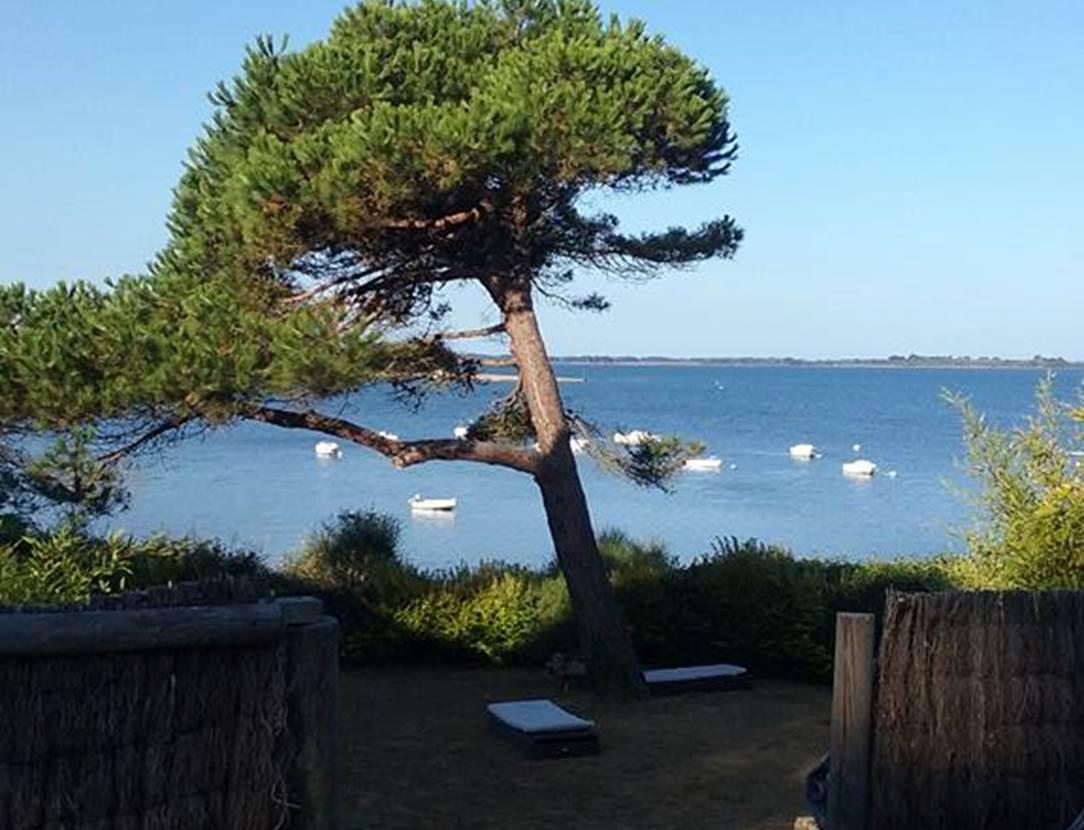 Terrain-Maison-Le-Menach-Christian-Saint-Armel-Presqu'île-de-Rhuys-Golfe-du-Morbihan-Bretagne sud