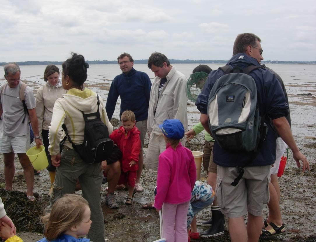 Sortie-découverte-nature-et-littoral-pêche-à-pied-avec-Gwen-saint-colombier-morbihan-bretagne sud