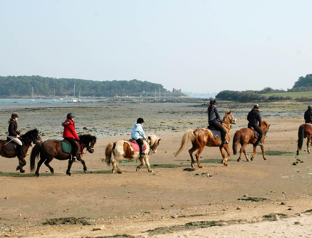 Centre-Equestre-Mané-Guernehué-Baden-Golfe-du-Morbihan-Bretagne-Sud