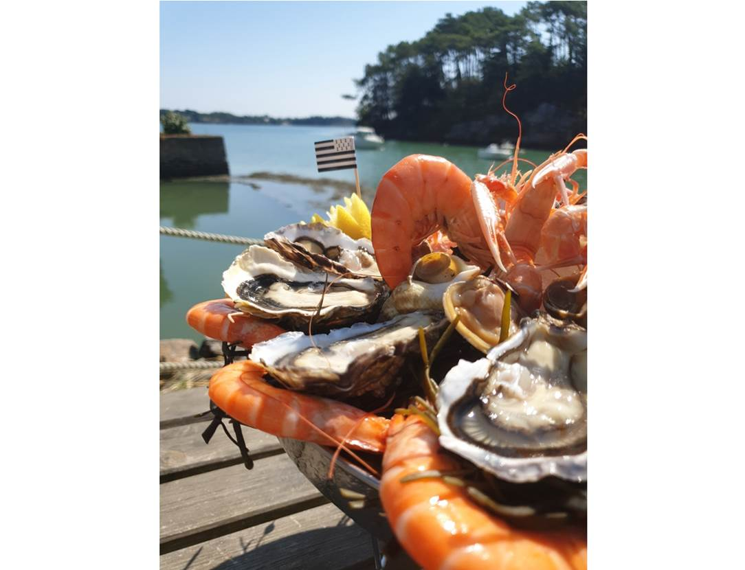 Ets-Gouguec-Producteur-Larmor Baden-Golfe-du-Morbihan-Bretagne sud