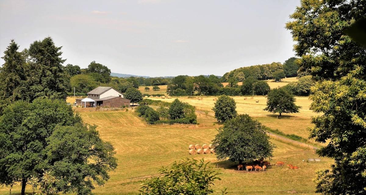 Le Green Camp d'Octavie  et son environnement