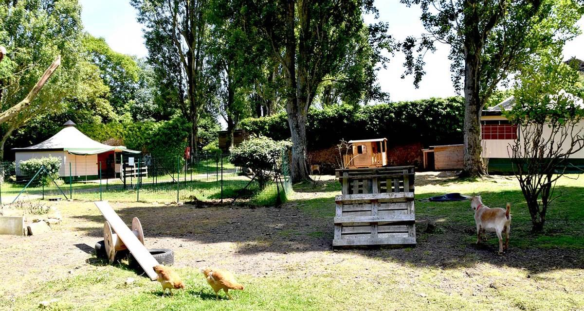 Mini ferme avec ses chèvres et poules