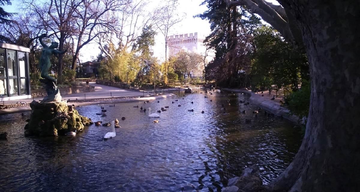 Avignon (4)