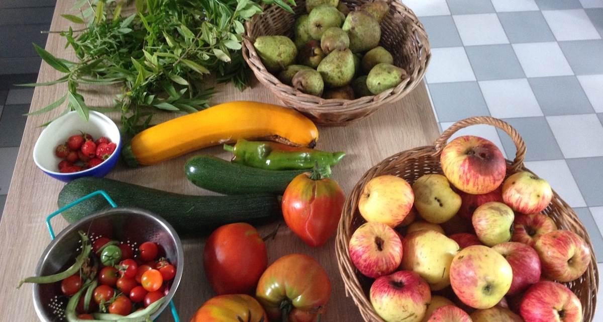 fruits et legumes du jardin