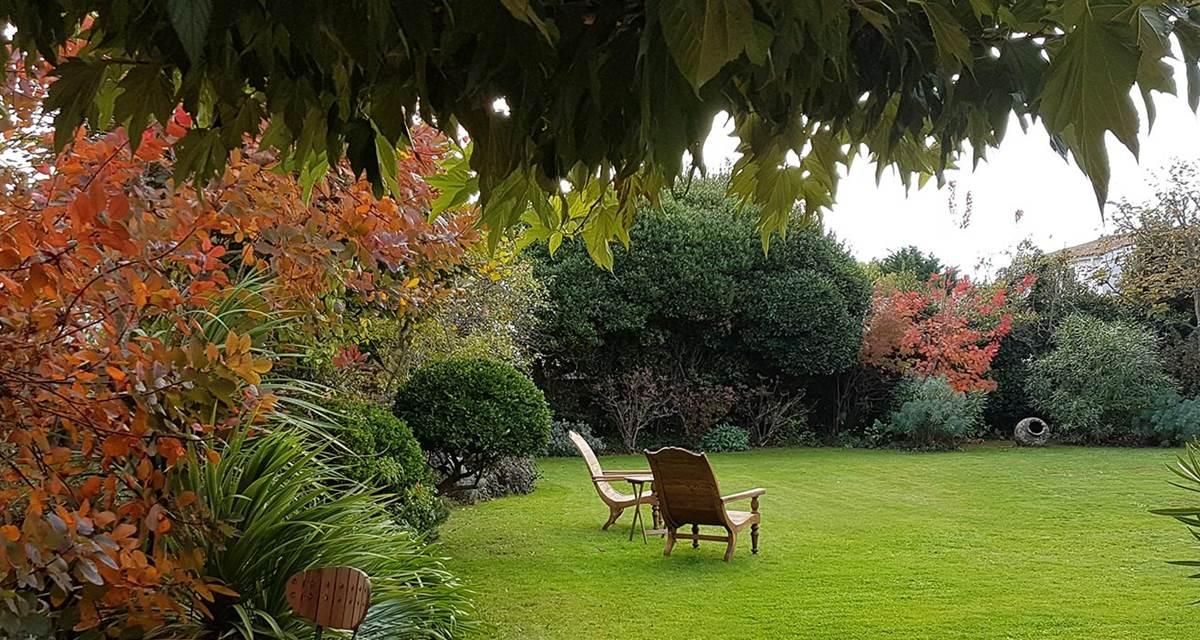 lumiere-d-automne