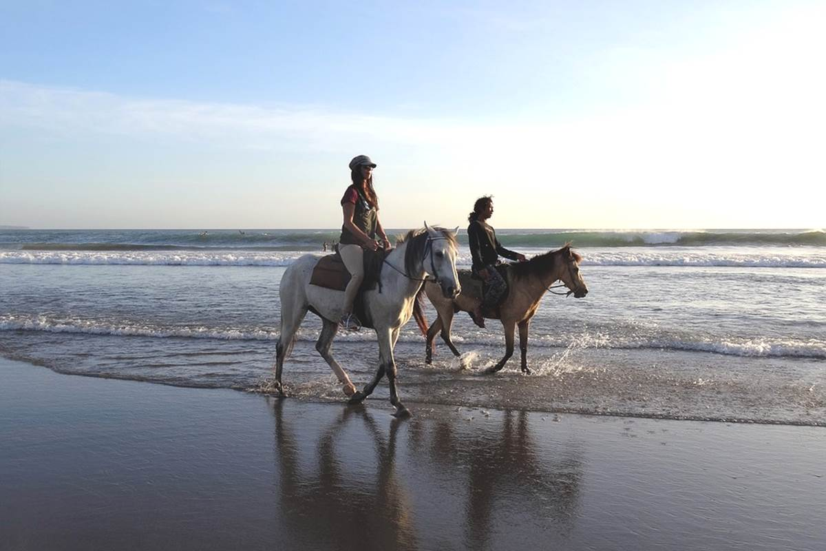 Une ballade à cheval sur la plage