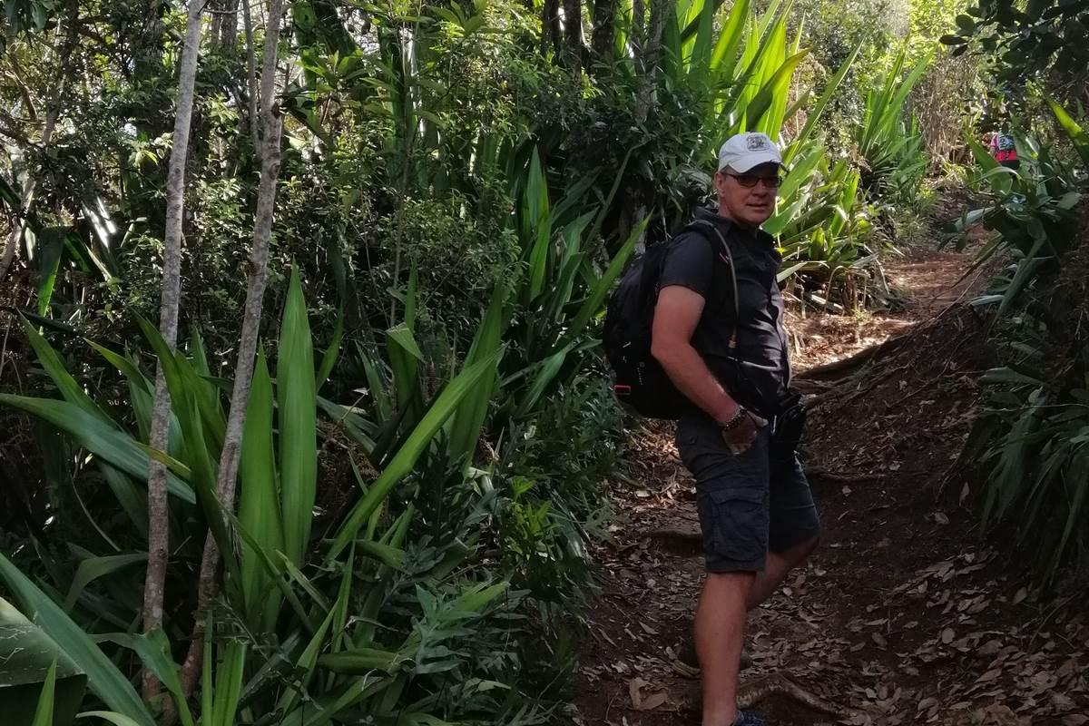 Dans la forêt d'Etang Salé