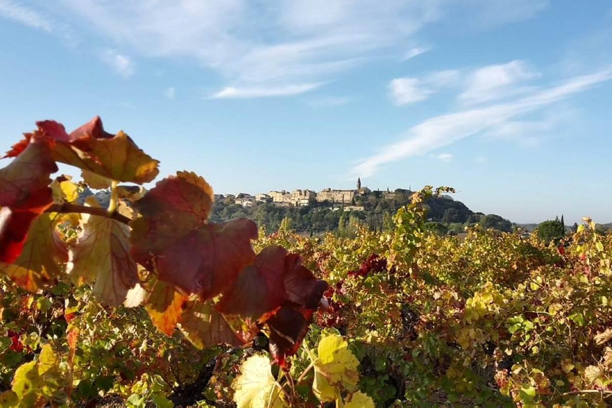 Castillon-du-Gard (2)