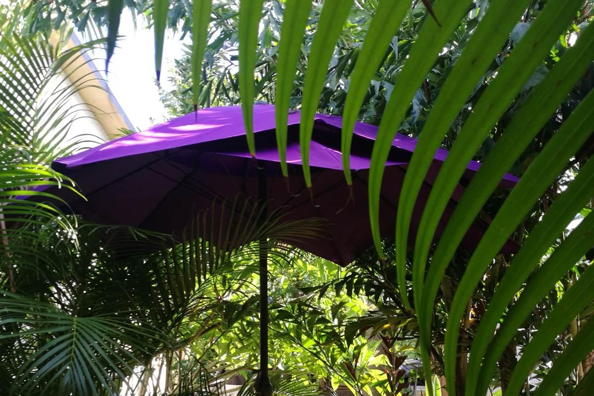 La terrasse ombragée de Ti Caze Nature