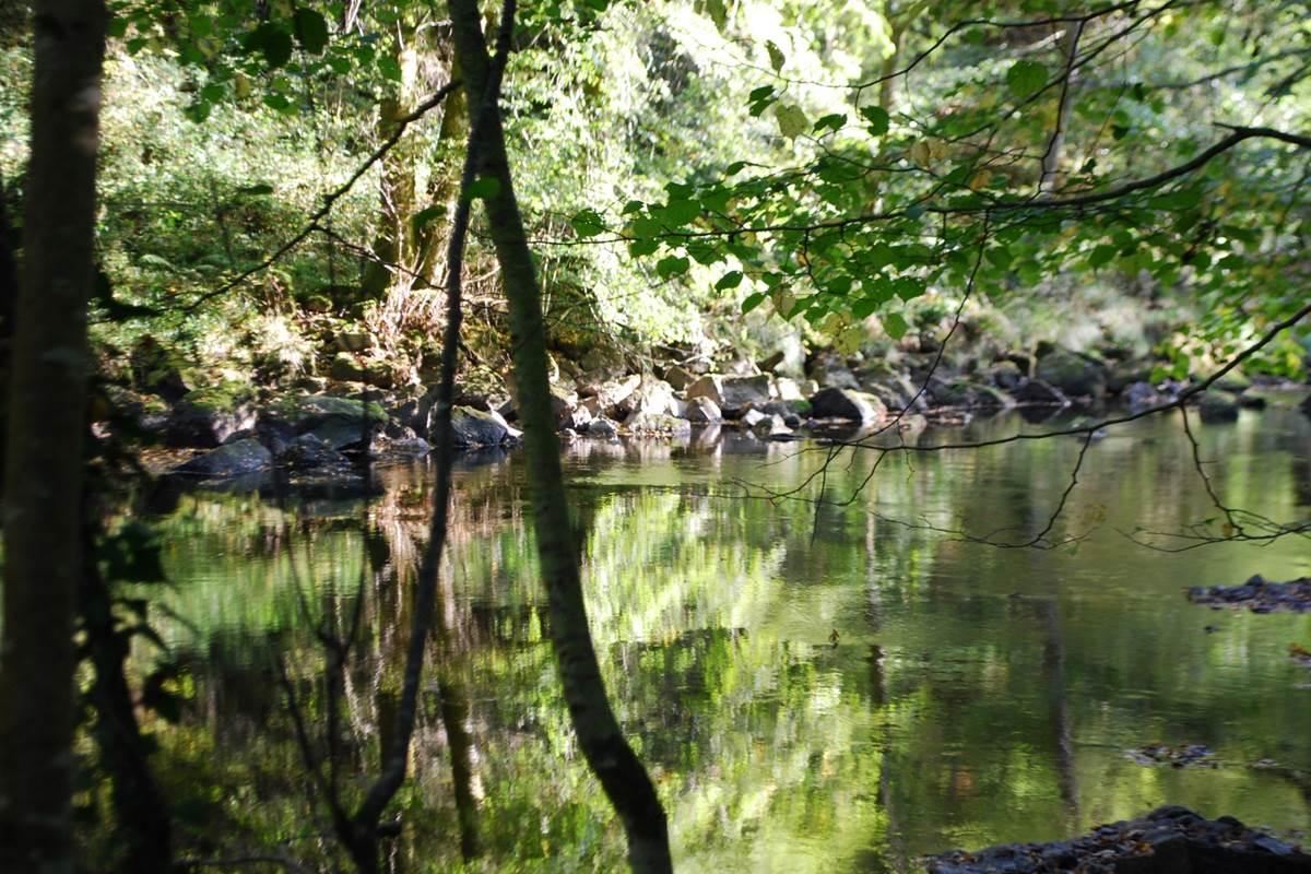 la Vienne à La Lérisse  20' à pied du Ranch des Lacs Hébergement Parc Naturel régional de Millevaches