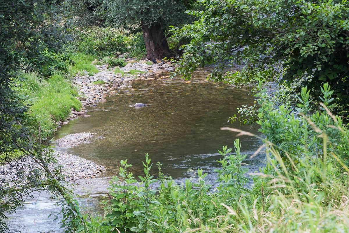 Maison joangi rivière
