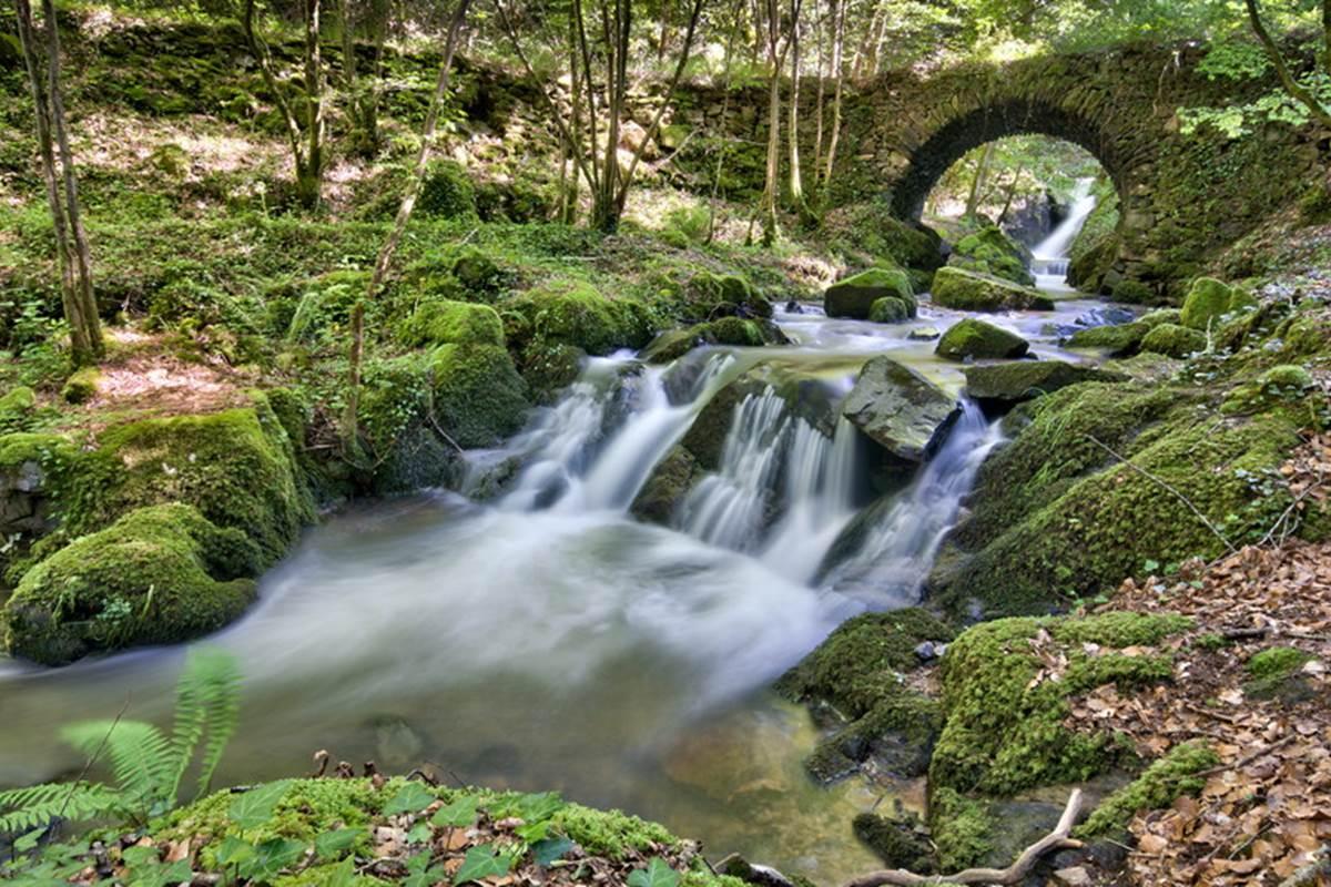 Ruisseau de Frèzes à Terrou © Lot Tourisme C. Novello