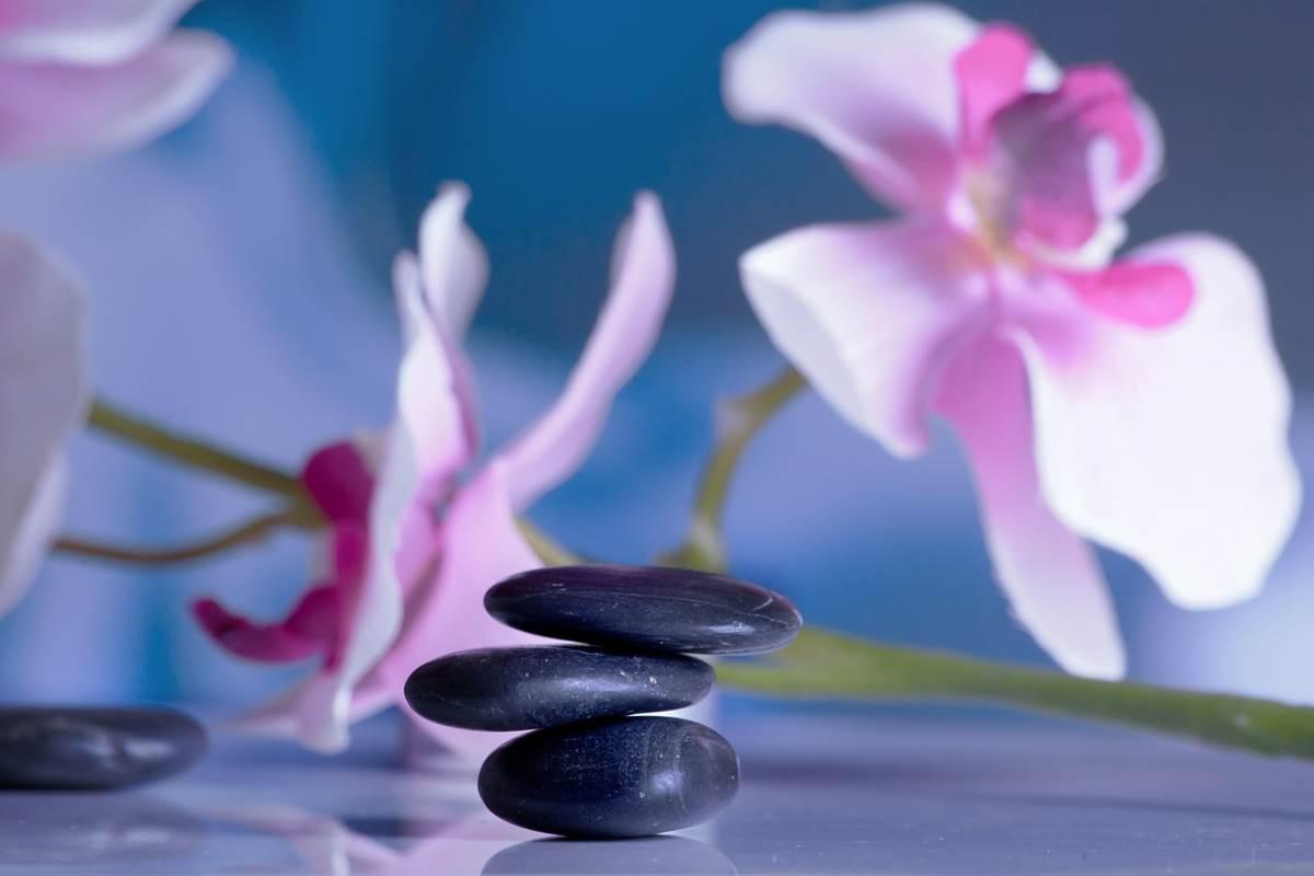 Zen hatitude
