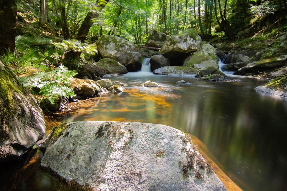 Ruisseau du Cayla - Lot