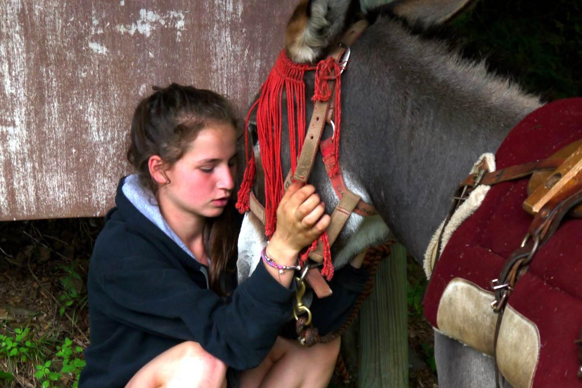 Secrets partagés avec mon âne...