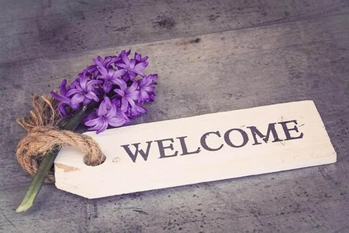 hyacinth-1398839__340