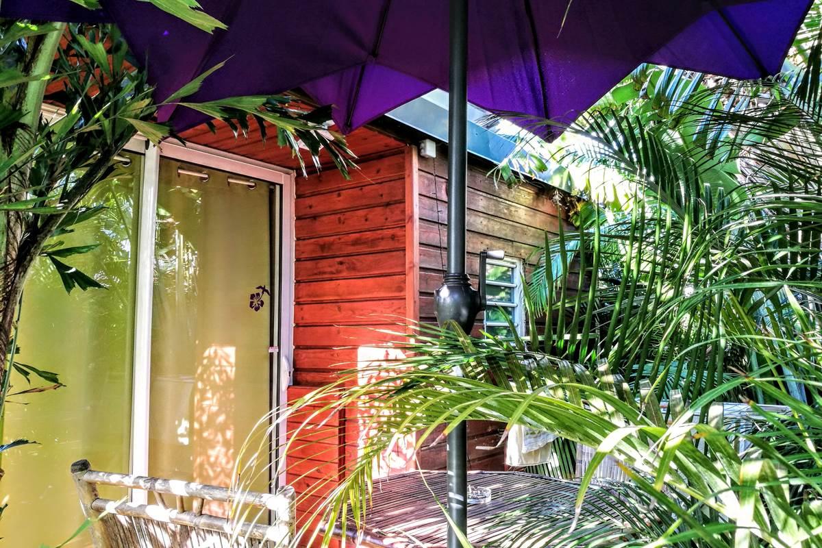 La terrasse, dans les plantes tropicales